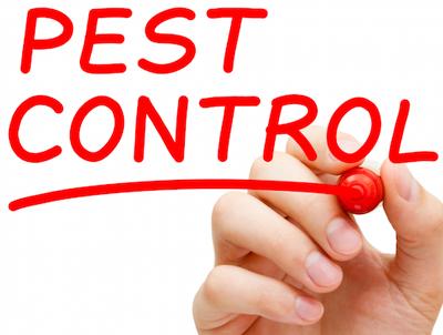 minuteman-pest-control