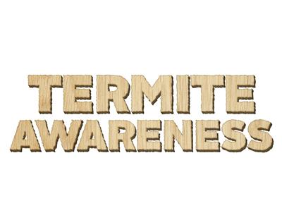 termite-awareness